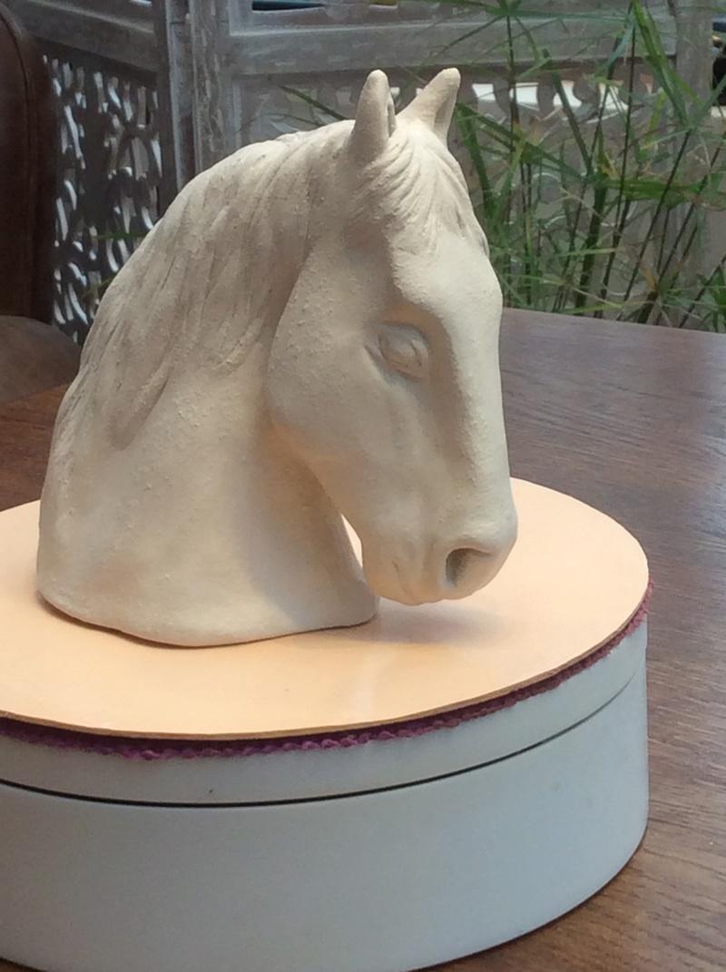 Petit cheval pour mon fils ...  27650810