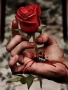 La rose à dix - Page 2 Captur10