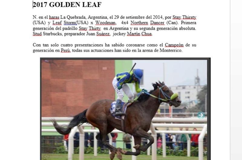 2017 GOLDEN LEAF Golden10