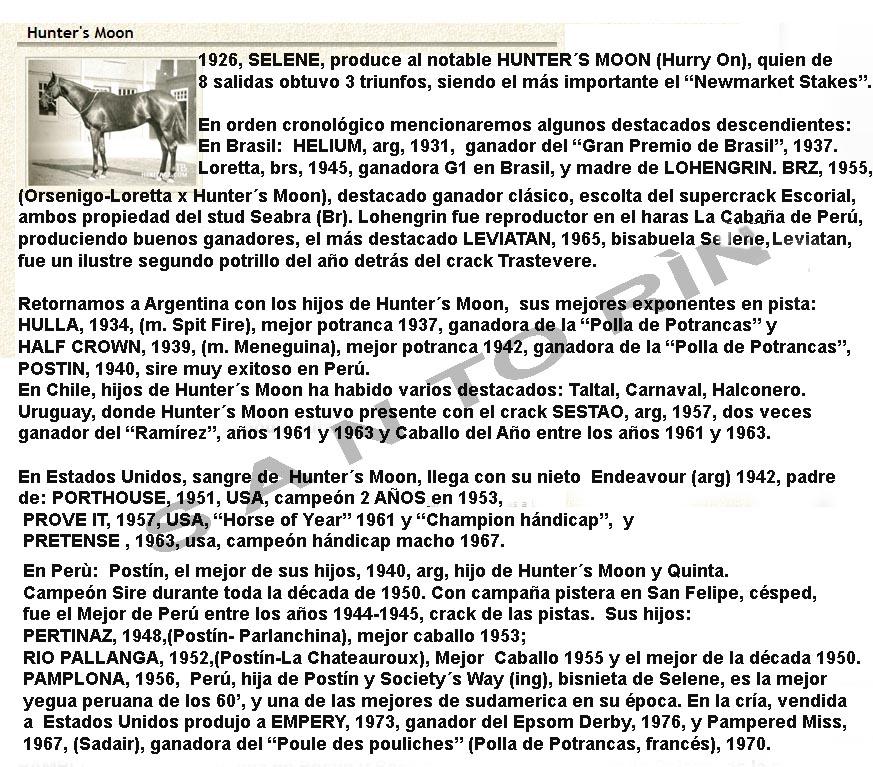 SELENE LA MATRONA DEL SIGLO XX Hunter11