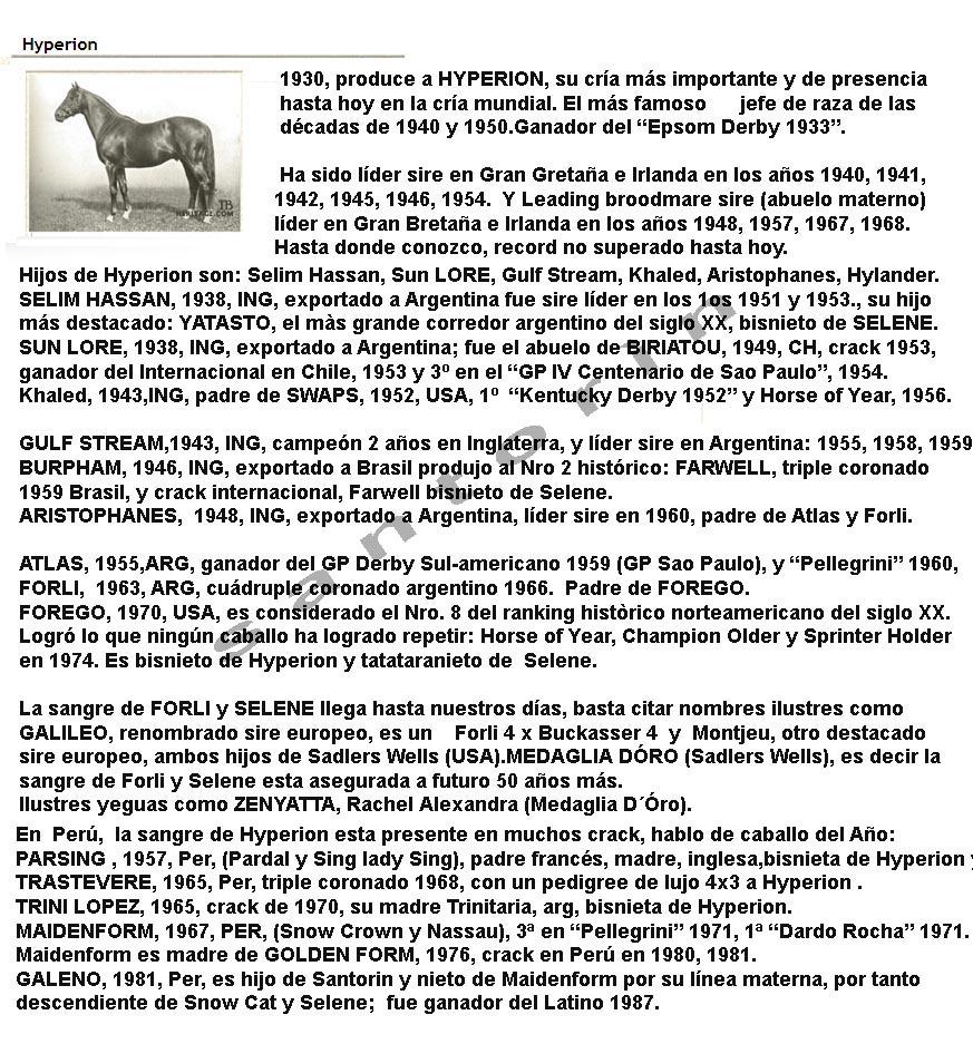 SELENE LA MATRONA DEL SIGLO XX Hyperi11