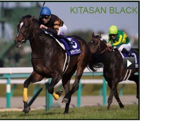 KITASAN BLACK Kitasa11