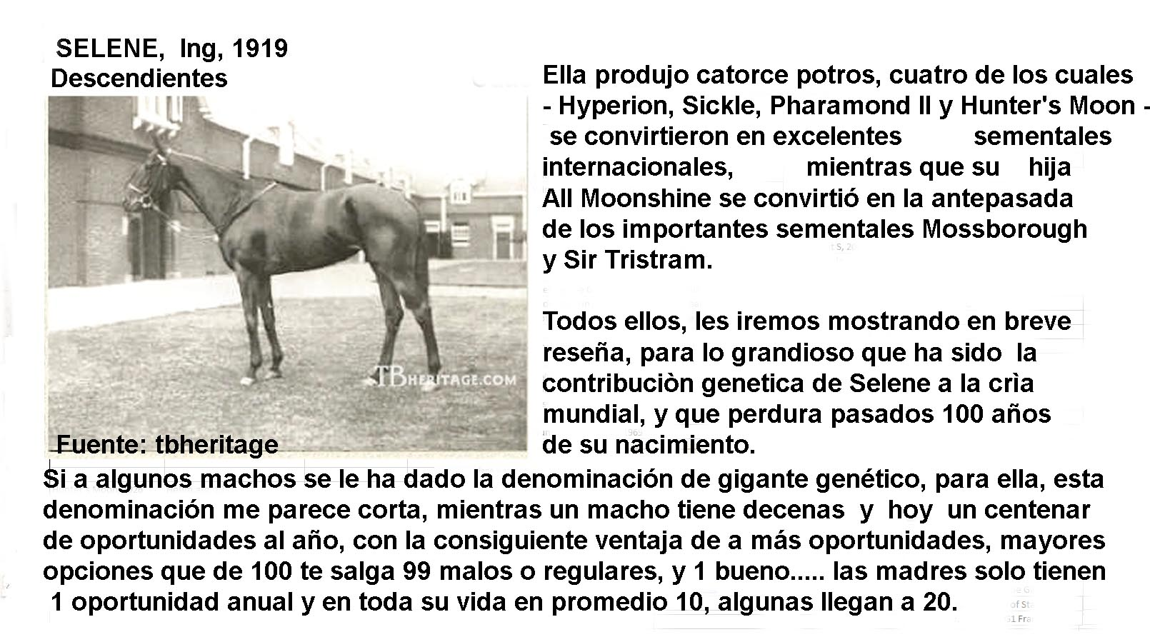 SELENE LA MATRONA DEL SIGLO XX Selene12