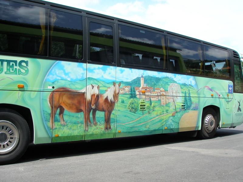 Autocars de la Vallée d'Azergues Iliade14