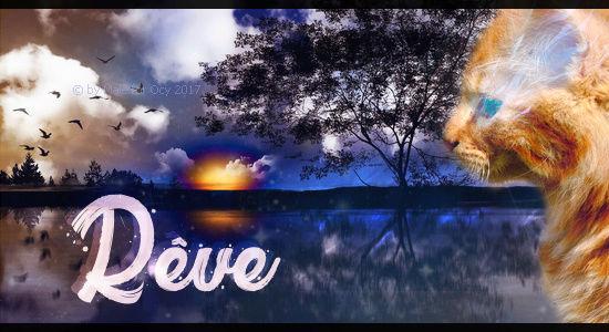 Vive Noël ! Ryve_t10