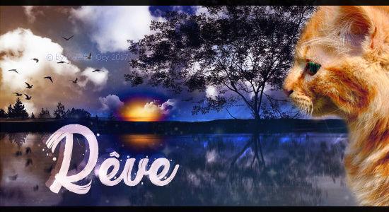 Vive Noël ! Ryve_t11