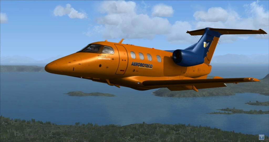 Textura do Phenon100 FSX/P3D (CARENADO) 120