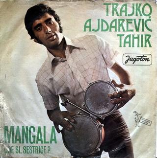 Tahir Ajdarevic Trajko - Diskografija R-252114