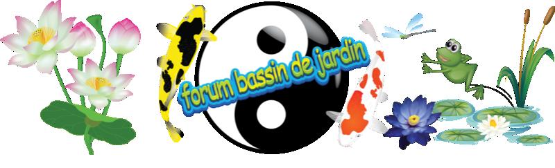 Forum bassin de jardin