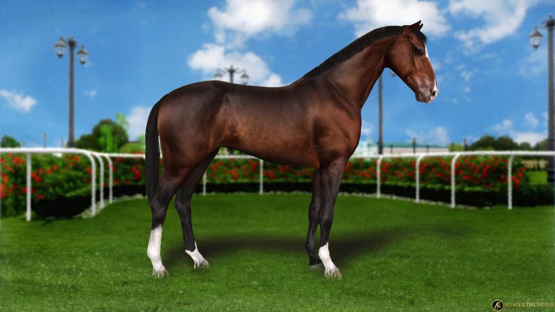Регистрация лошадей в RHF 2 - Страница 8 10