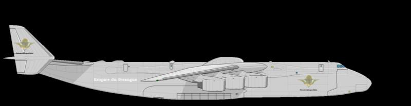 Forces aéroportés Antono10