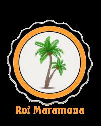 Loi sur la fraude fiscale Roimar10