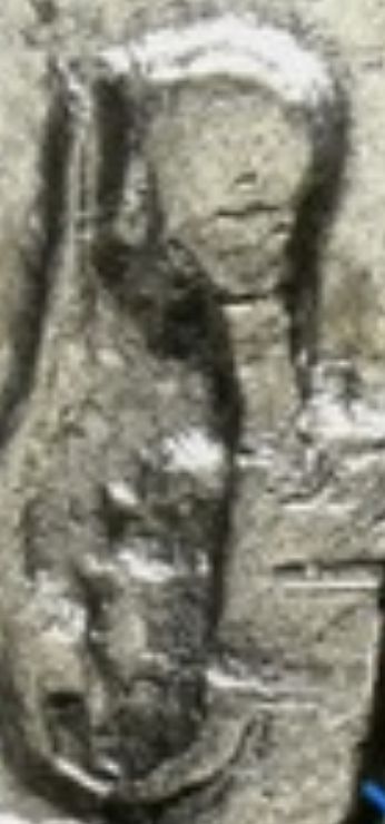 Hadrien avec bébé au revers ??? 20180510