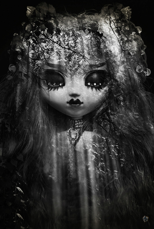 ♦ [The Only One] Forest of Light [Pullip FC] P.2 ♦ Dsc_1213
