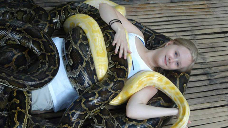 طرائف وعجائب Snake_10