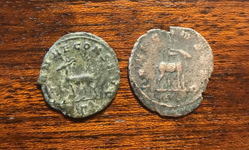 Antoninianos de Galieno. Zoo de Galieno. Roma Img_5230