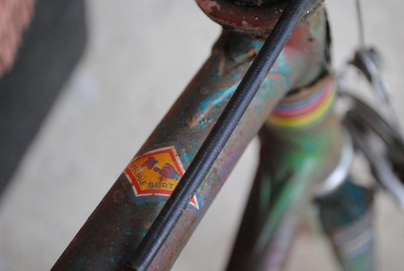 vélo Bertin Dsc_0113