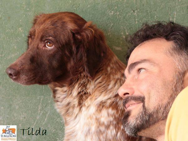 TILDA - ES (Sole) 33400410