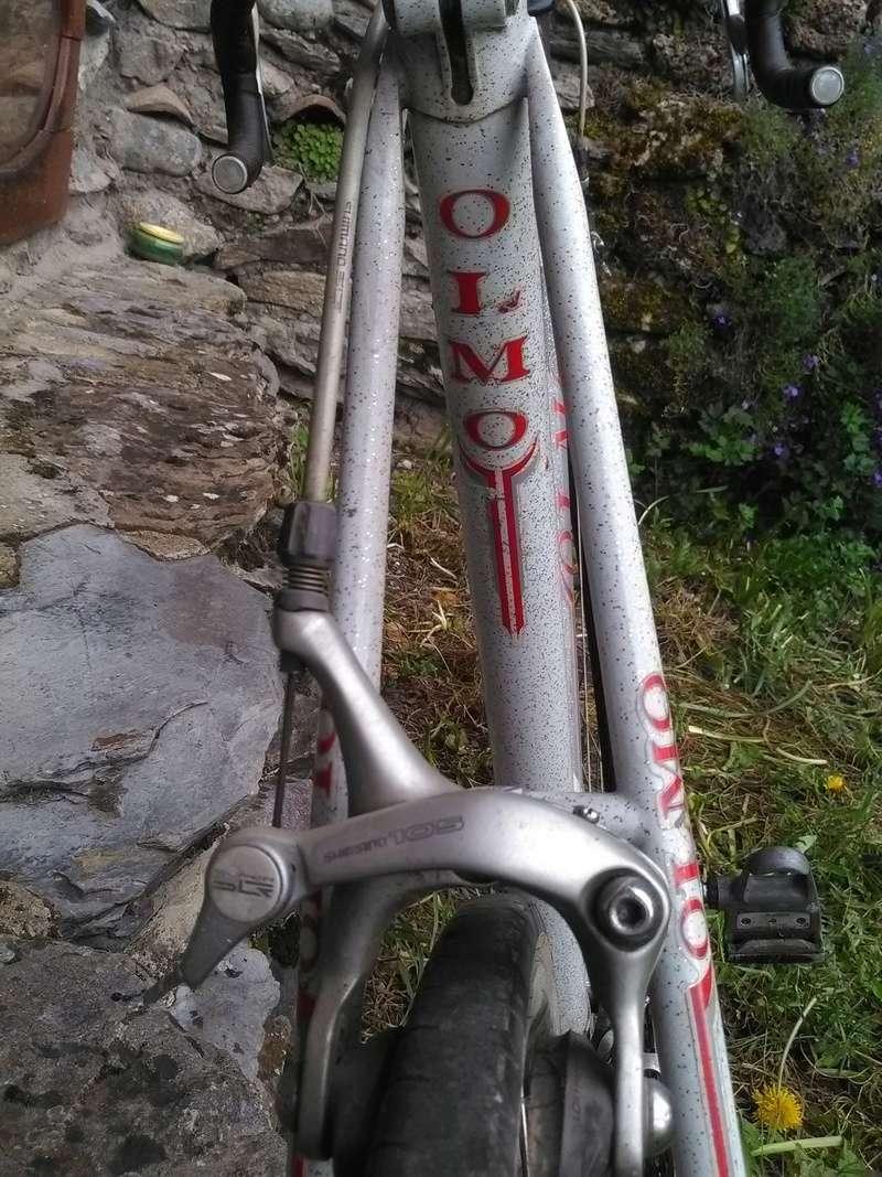 Olmo San Remo Img_2064