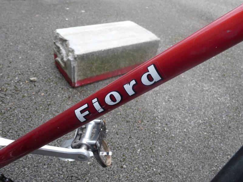 Fiordalisi P1080633