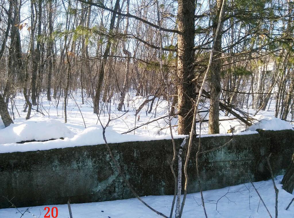 Серафимовка - Страница 5 2010