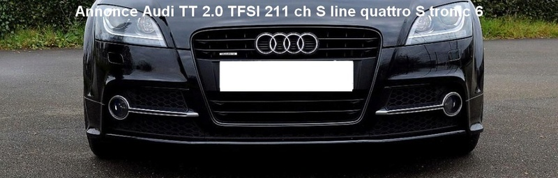 Audi TT 2.0L. TFSI  211CV  S-Line Quattro Sans_t13