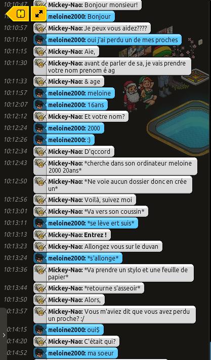 {C.H.U} Rapport d'actions RP de Mickey' 127