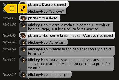 {C.H.U} Rapport d'actions RP de Mickey' 317