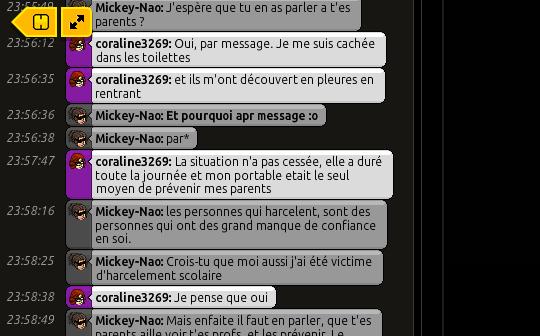 {C.H.U} Rapport d'actions RP de Mickey' Rp220