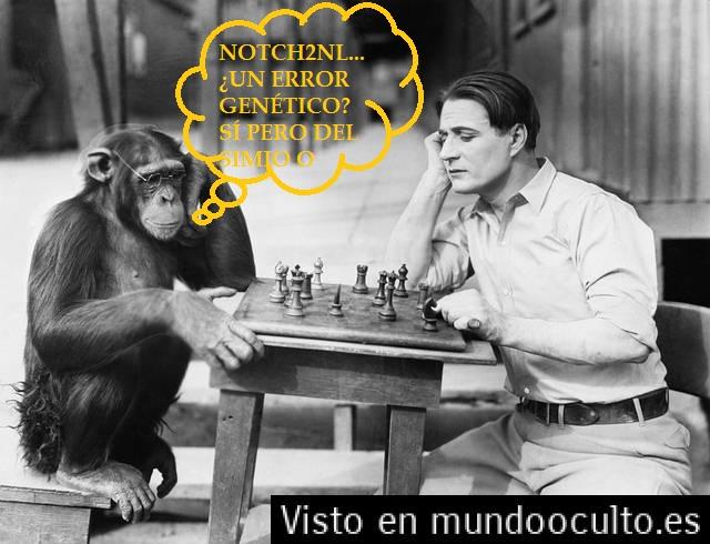 EL NOTCH2NL ¿UN ERROR GENÉTICO?... Descub10