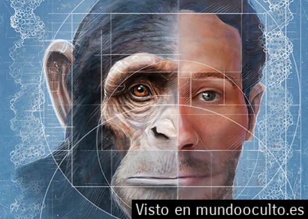 EL NOTCH2NL ¿UN ERROR GENÉTICO?... Descub11