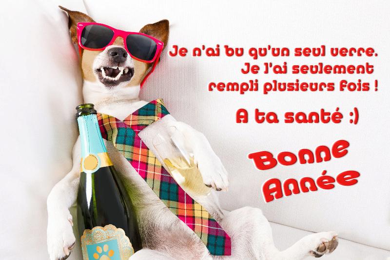Bonne année à vous  Bonne_10