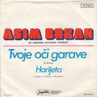 Asim Brkan - Diskografija 2 R-110713