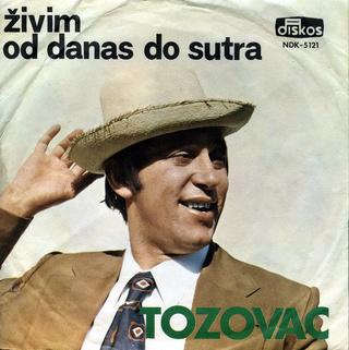 Predrag Zivkovic Tozovac - Diskografija R-221215