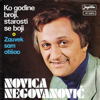Novica Negovanovic - Diskografija R-221623