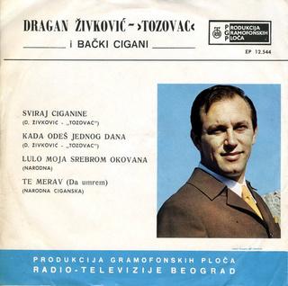 Predrag Zivkovic Tozovac - Diskografija R-250511