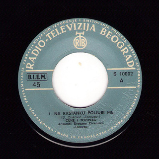 Predrag Zivkovic Tozovac - Diskografija R-300313