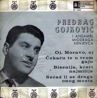 Predrag Gojkovic Cune - Diskografija  R-305510
