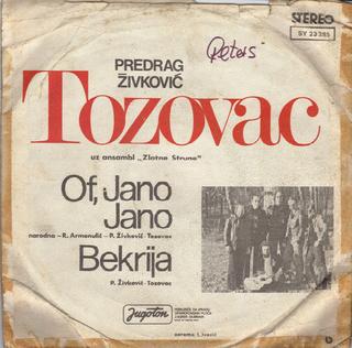 Predrag Zivkovic Tozovac - Diskografija R-308915