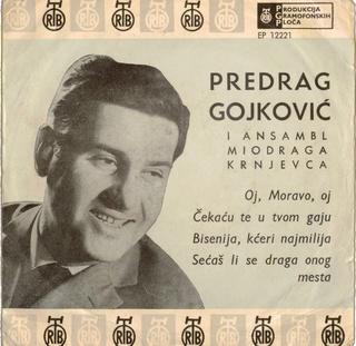 Predrag Gojkovic Cune - Diskografija  R-395510