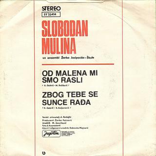 Slobodan Mulina - Diskografija  R-411310