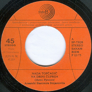 Nada Topcagic - Diskografija R-466317