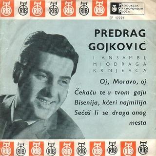 Predrag Gojkovic Cune - Diskografija  R-619711