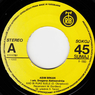 Asim Brkan - Diskografija 2 R-674614