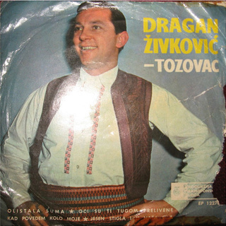 Predrag Zivkovic Tozovac - Diskografija R-764510
