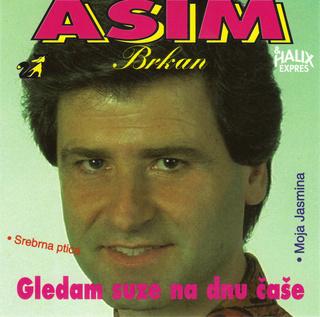 Asim Brkan - Diskografija 2 R-837613