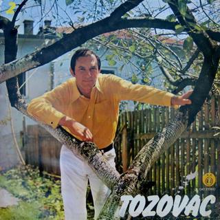 Predrag Zivkovic Tozovac - Diskografija R-988010
