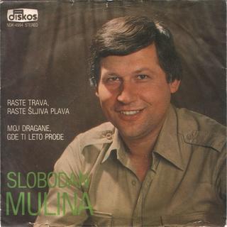 Slobodan Mulina - Diskografija  Slobod14