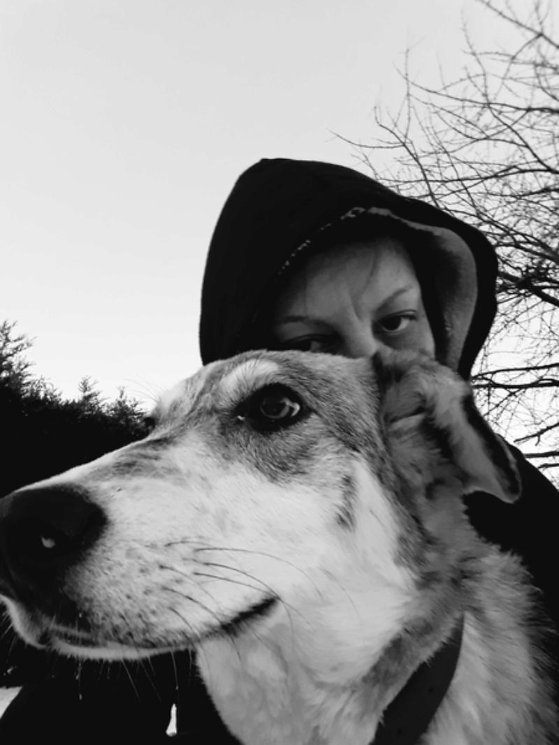 BALTO - mâle croisé Loup Tchécoslovaque ou Nordique ? de taille moyenne adulte, né en avril 2017 (PASCANI) - REMEMBER ME LAND - Adopté par Ludivine (80) - Page 2 20180210