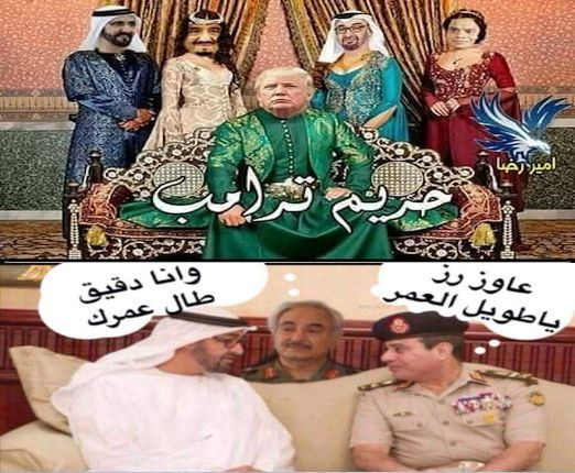 السيسي: لن نسمح بأن تظل ليبيا مسرحا لصراعات دولية وإقليمية Oad_od10